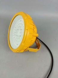 LED防爆灯LED防爆投光灯,食品厂用LED防爆泛光灯50W