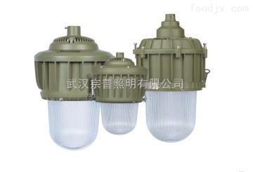 HRD82防爆灯具高效防爆节能HID灯HRD82系列