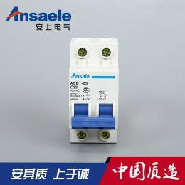 微型斷路器  小型斷路器 小型開關
