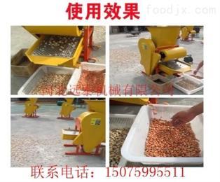 全自动花生剥壳机 自动上料剥壳脱粒机 远泰