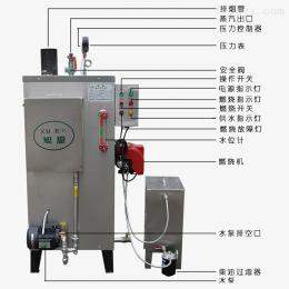 30kg雅安小型全自动燃油蒸汽锅炉高压蒸汽发生器