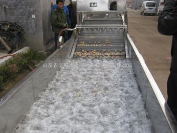 生产油菜清洗机/清洗机设备/白菜清洗机