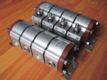 专业供应意大利SALAMI齿轮泵