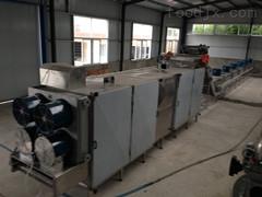 1000型公司經營新品皮蛋烘干機