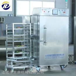 HDSD-400果蔬速冻机