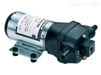 DP微型電動隔膜泵