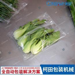 KT-450全自動蔬菜包裝機