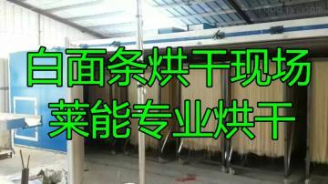 LNSXGW-30萊能面條烘干機 專業干燥 免費試驗上門服務