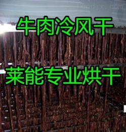 LNDW-10萊能牛肉烘干機 低溫冷風干燥機 質量可靠