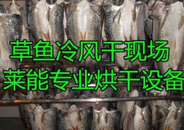 LNDW-10杭州萊能草魚烘干機 全自動化操作 冷風干燥 一年質保 節能環保