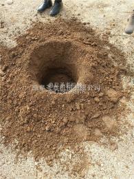 ST-W1植樹挖坑機價格 地鉆挖坑機