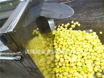 MG-1500土豆去皮清洗机,清洗流水线,全自动鲜土豆清洗设备