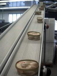 K301月饼链板输送线|药品皮带输送机