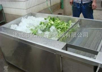 斜坡式网带蔬菜清洗机流水线