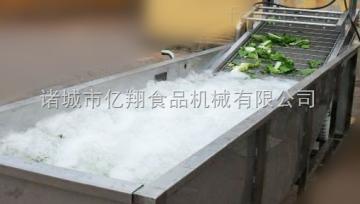 蔬菜清洗风干流水线设备厂家