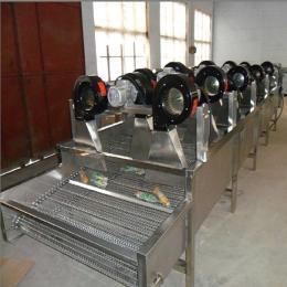 FG-5米包装袋除水风干机红枣干燥机 表面除水