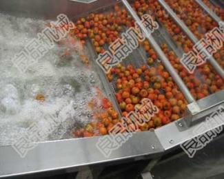 批发水果蔬菜气泡清洗机