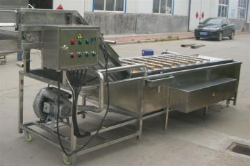 LPQX-600蔬菜清洗机厂家