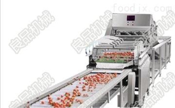 LP-600蔬菜去農藥設備//去蔬菜農藥殘留清洗機//蔬菜清洗機