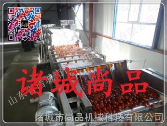 SPQXL-4000果蔬清洗烘干流水线