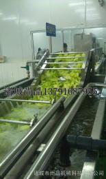 SPQX-3000【北京蔬菜出口客户推荐】尚品牌白菜清洗机 专用叶类蔬菜洗菜机