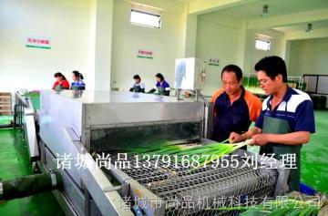 SPQX-3000江西宜春小葱清洗机 省水型洗葱机 洗葱机报价