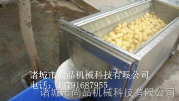 SPQX-1000专业生产红薯去皮毛刷清洗机厂家 尚品清洗去皮机 自动清洗脱皮不需人工