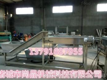 SPTS-1000鱼豆腐专用螺旋网带提升机 食品级材质制造 油炸食品提升机