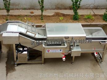 SPQX-3000牛蒡清洗機 臭氧殺菌凈水清洗機