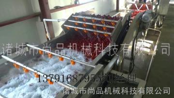 大棗清洗流水線 果蔬加工成套設備
