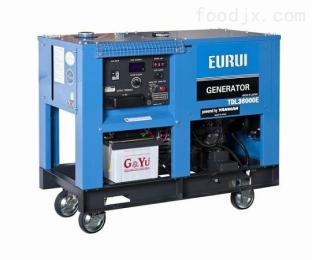 东洋TDL16000E柴油发电机组