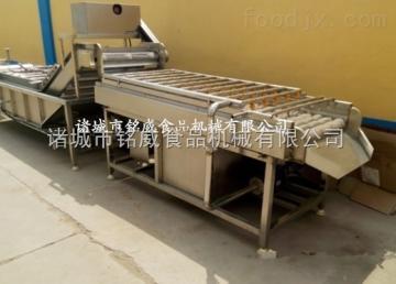 QXJ-5鮮瑪咖前處理清洗設備 瑪卡清洗機