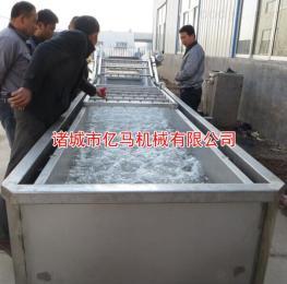 臭氧杀菌气泡式蔬菜清洗机,臭氧杀毒安全可靠